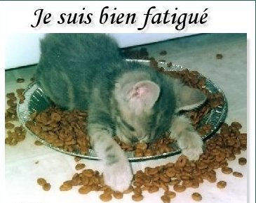 fatigue-permanente