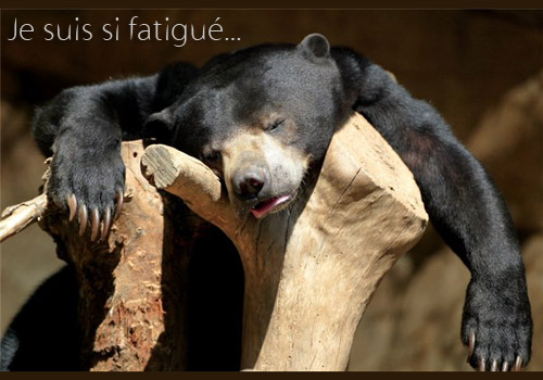 symptomes-fatigue